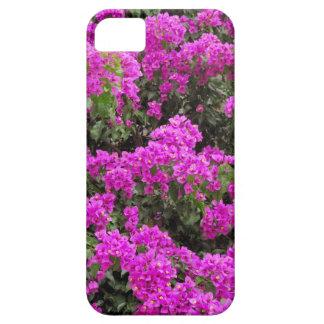 Bougainvillea iPhone 5 Fodraler