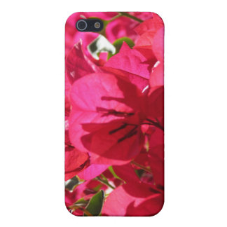Bougainvillea iPhone 5 Fodral