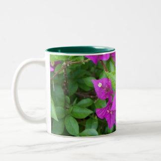 Bougainvillea Kaffe Kopp