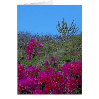 Bougainvillea och kaktus hälsningskort