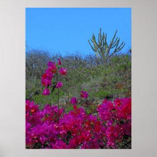 Bougainvillea och kaktus print