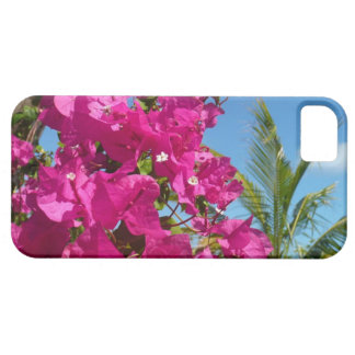 Bougainvillea- och palmträdIphone 5 Fodral-kompis iPhone 5 Skydd