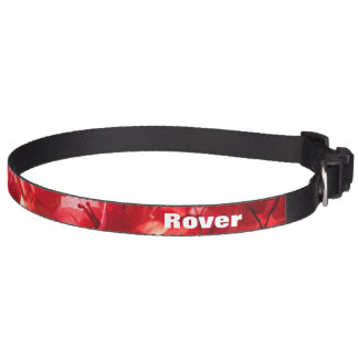 Bougainvilleas Hund Halsband