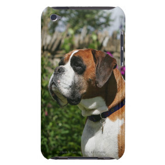 Boxarehund i blommorna iPod Case-Mate fodraler