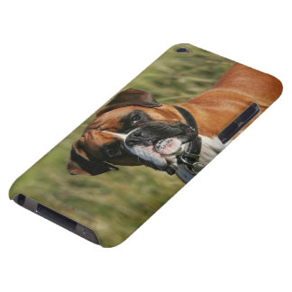 Boxarehund som stirrar på kameran iPod Case-Mate fodraler