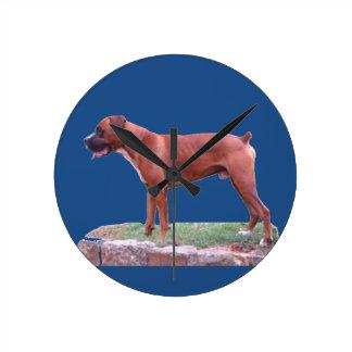 Boxarehunden, manlign, rundavägg tar tid på rund klocka