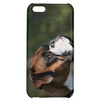 Boxarehundsidan profilerar iPhone 5C skydd