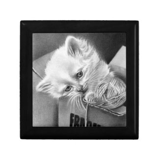 Boxas den bräckliga gåvan för kattungen liten presentask