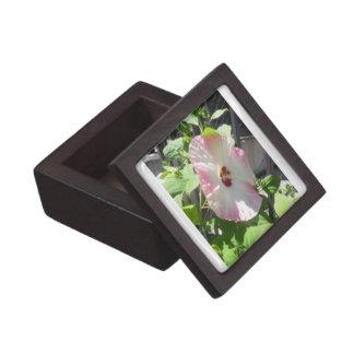 Boxas den högvärdiga gåvan för den rosa hibiskusen premie prydnadslåda