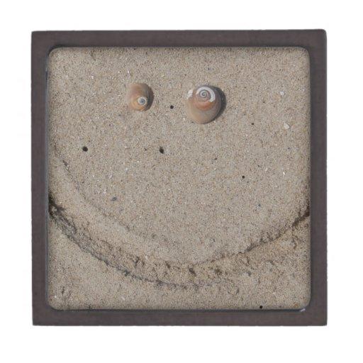 Boxas den högvärdiga gåvan för det Beachy leendet Premie Smyckeskrin