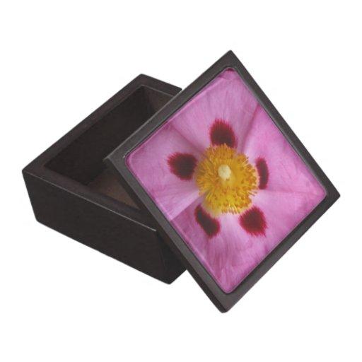 Boxas den högvärdiga gåvan för Orchidrockrosen Premie Prydnadslådor