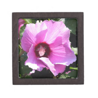 boxas den högvärdiga gåvan för rosablomman premie prydnadslådor