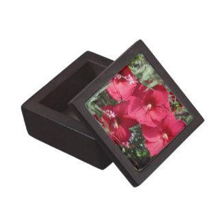 Boxas den röda högvärdiga gåvan för hibiskusen premie presentförpackning