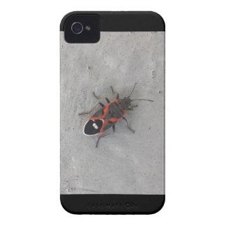 Boxas fläderskalbaggen iPhone 4 cases