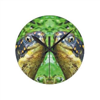 Boxas sköldpaddor som vänner tar tid på rund klocka