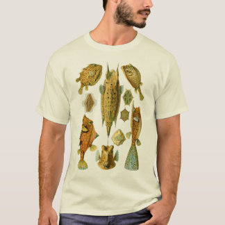Boxfish eller Cowfish T Shirt
