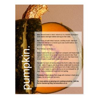 Bra växa vägleder: Pumpa & Chard Vykort