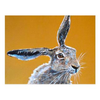 Brained Hare! Vykort