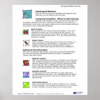 Brainology® affisch 5: Lära och minne