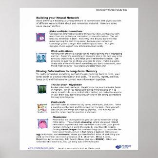 Brainology® affisch 6: Bygga knyter kontakt dina N