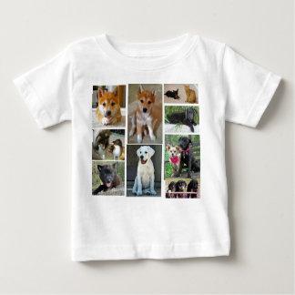 brandi-the-shetland-sheepdog-3_44598_2010-04-18… tshirts
