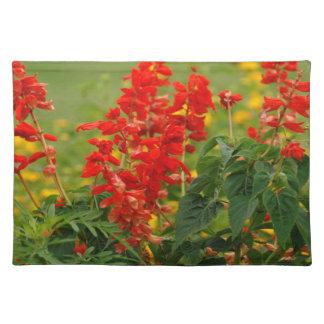 Brännhet glödhet Sally Salvia blomsterträdgård Bordstablett