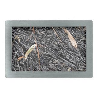 Bränt gräs