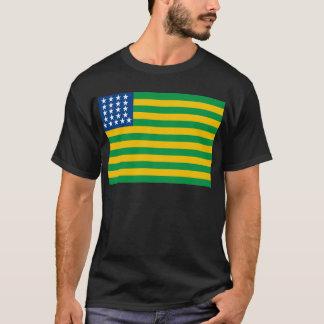 Brasilien flagga (1889) t-shirts
