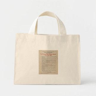Breastfeeding Advocacy PSA för 1914 NYC Mini Tygkasse