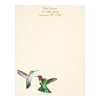 Brevhuvud för Hummingbirds för vildRuby Throated