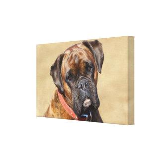 Brindle boxarehund canvastryck