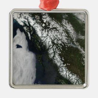 British Columbia Julgransprydnad Metall