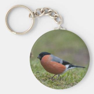 Brittisk fågel Keychain för domherre Nyckel Ringar