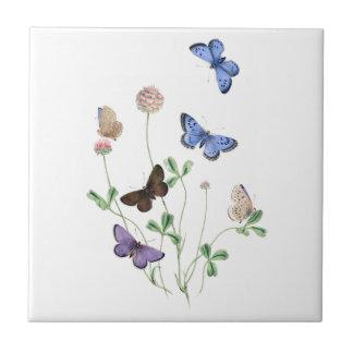 Brittiska fjärilar på keramisk klöver belägger med kakelplatta