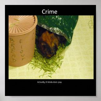 Brott Poster