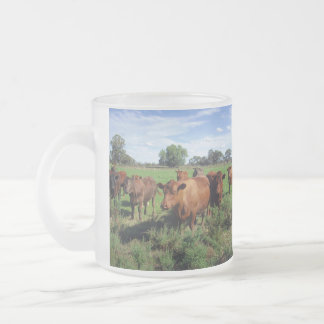 Brown_Cow_Field _Frosted_Glass_Beer_Mug. Frostad Glasmugg