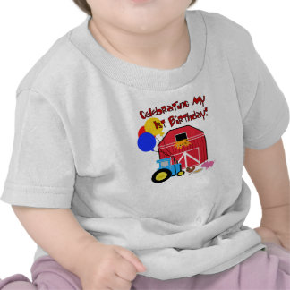 Bruka den 1st födelsedagen tshirts