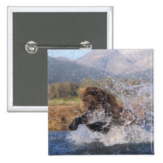 Brun björn, grizzlybjörn som fångar den rosa laxen standard kanpp fyrkantig 5.1 cm