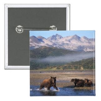 Brun björn, grizzlybjörn, suggafiske med ungar, standard kanpp fyrkantig 5.1 cm