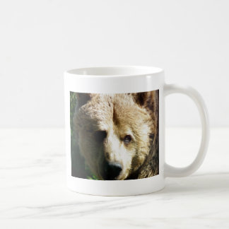 Brun björn kaffemugg