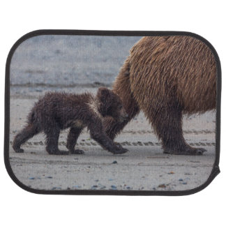 Brun björnunge bilmatta