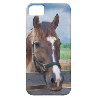 Brun häst med halteren barely there iPhone 5 fodral