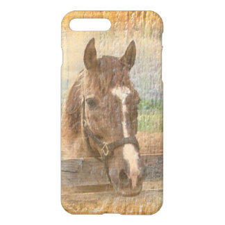 Brun häst med halteren på gammalt trä