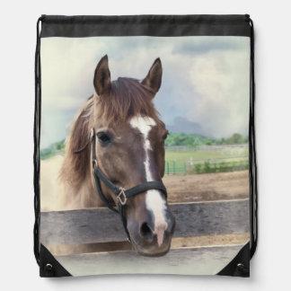 Brun häst med halteren ryggsäckar