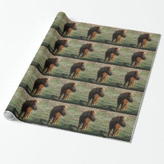 Bruna miniatyrhästar presentpapper