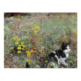 Bruno Liljefors - katt på blomsterrabatt Vykort