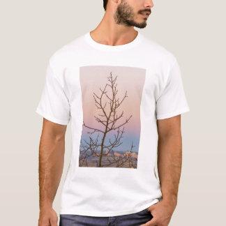 Bryce kanjon, Utah. Kalt träd framme av T-shirt