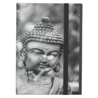 Buddha iPad Air Skal