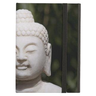 Buddha staty iPad air skydd