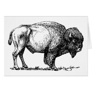 Buffel- eller Bisonhälsningkort Hälsningskort
